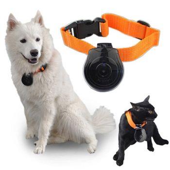 Digital Pet Collar Cam Camera Mini Video Recorder Cam Camera DVR Video Recorder Monitor For Dog Cat Puppy Black