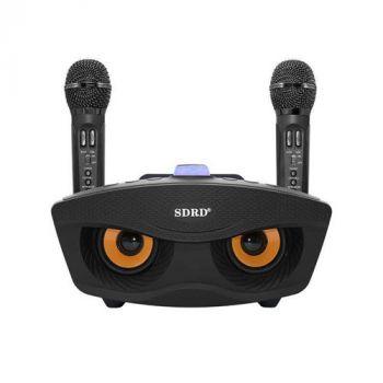SD306 Bluetooth Speaker Karaoke set
