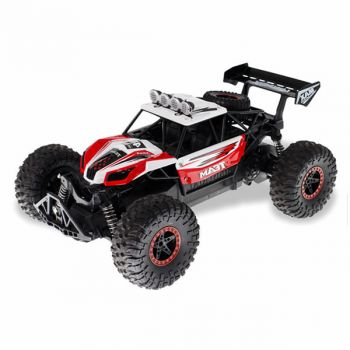1/16 2.4Ghz Off Road RC Car for Kids