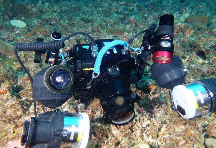 Fisheye Lens Dome Port