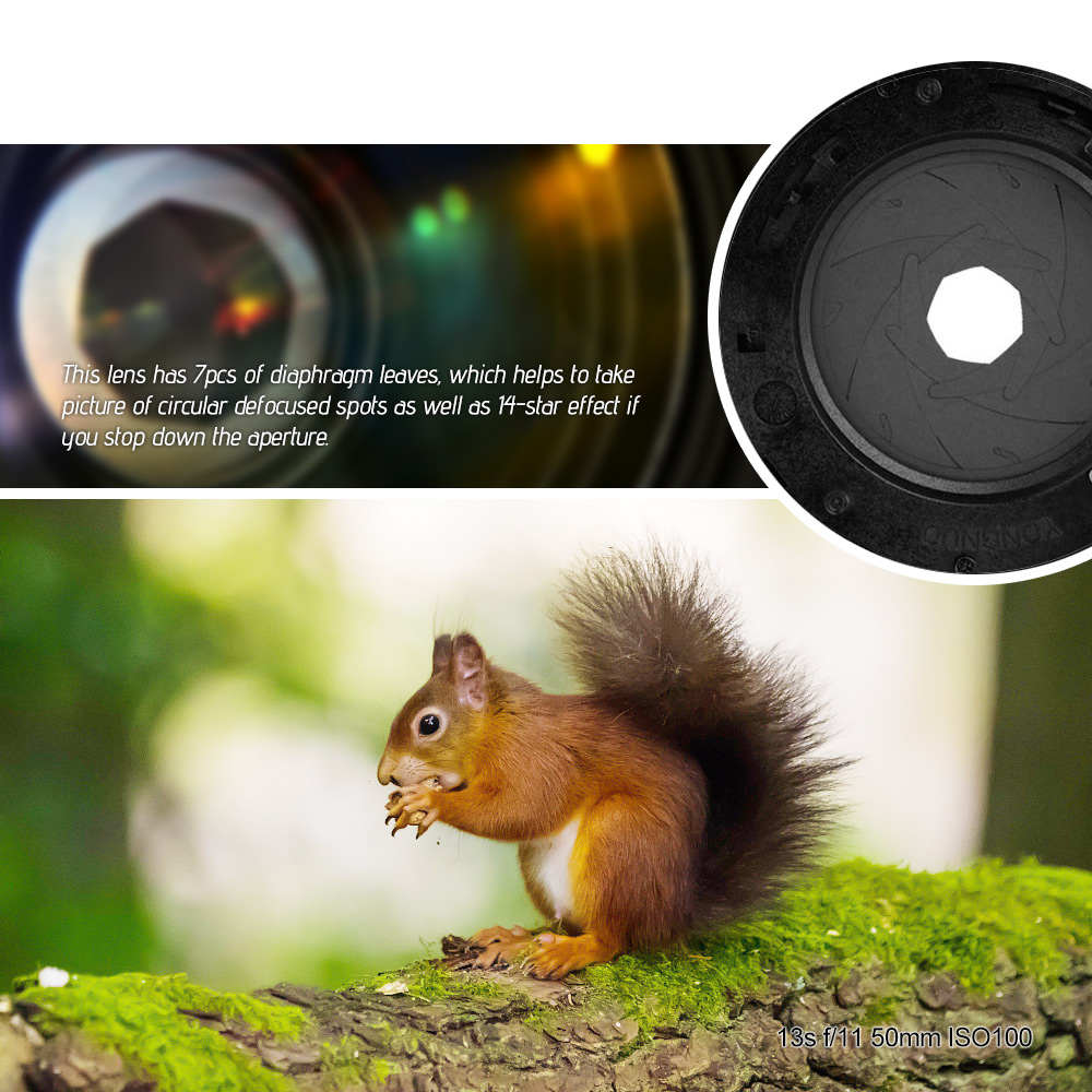 YONGNUO 50MM F1.4N F1.4 E standard prime Lens AF/MF for Nikon
