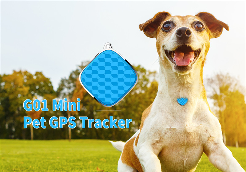 G01 Mini Pet GPS Tracker