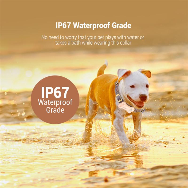 Z02 waterproof WiFi pet tracker GPS
