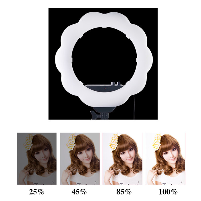384pcs Dimmable Ring Studio Outdoor Video LED Light